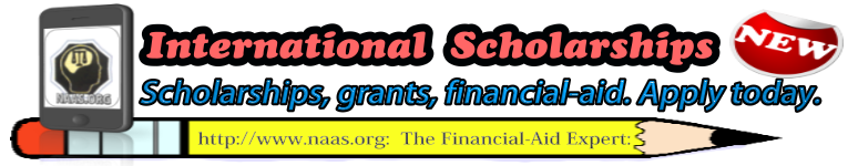 International Scholarships